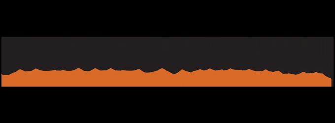 webwisesolutionslogo250