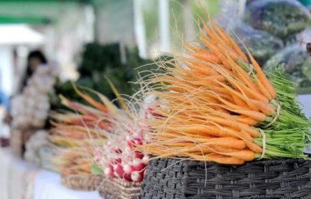 north-iowa-farmers-market