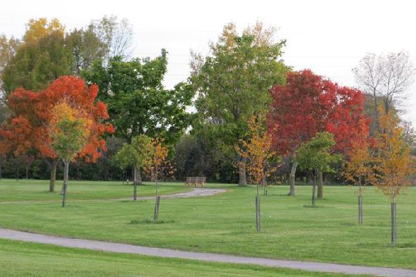 PARK-Arboretum-02-600x400-1