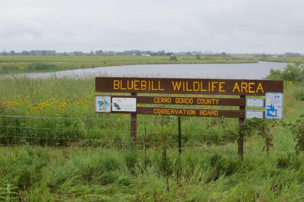 PARK-Blue-Bill-Wildlife-Area-01-600x400-1